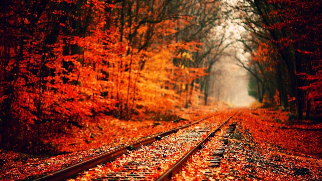 55 Hello Autumn Aesthetic Hd Wallpapers Desktop Background Android Iphone 1080p 4k 1920x1080 2020