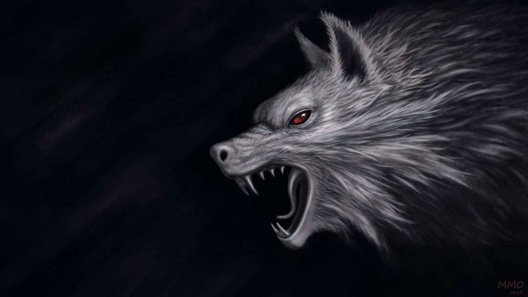 60 Wolf Hd Wallpapers Desktop Background Android Iphone 1080p 4k 2186x1229 2020