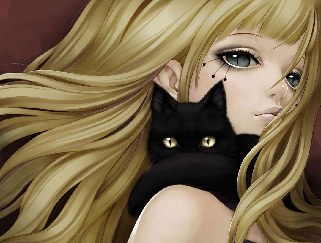 35 Kawaii Anime Cat Hd Wallpapers Desktop Background Android Iphone 1080p 4k 2479x1882 2020