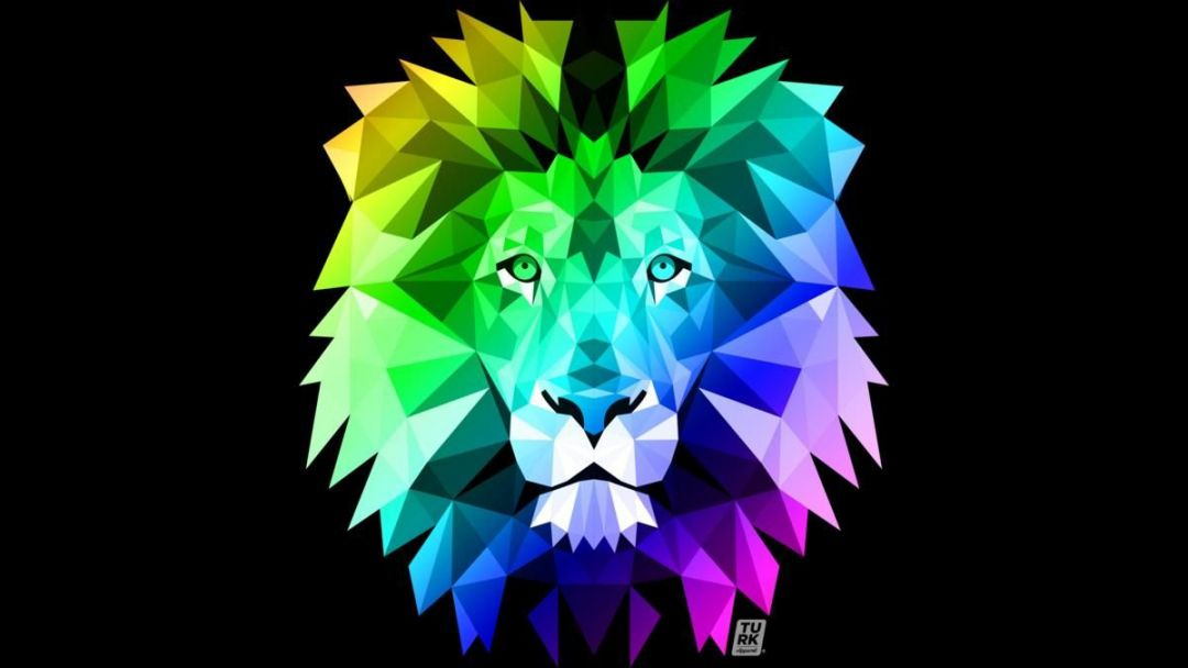 7620 Rainbow Lion Wallpaper 27 Image On Genchi Info Rainbow Android Iphone Hd Wallpaper Background Download Hd Wallpapers Desktop Background Android Iphone 1080p 4k 1080x608 2021