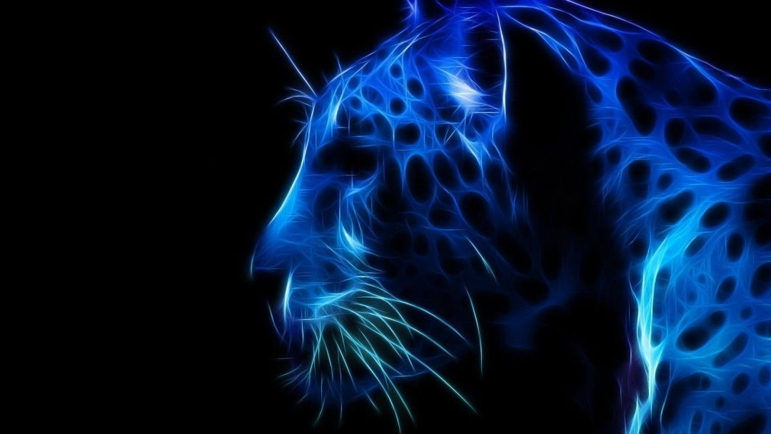 Neon Jaguar - Android, iPhone, Desktop HD Backgrounds / Wallpapers (1080p, 4k) HD Wallpapers (Desktop Background / Android / iPhone) (1080p, 4k) (767772) - Abstract