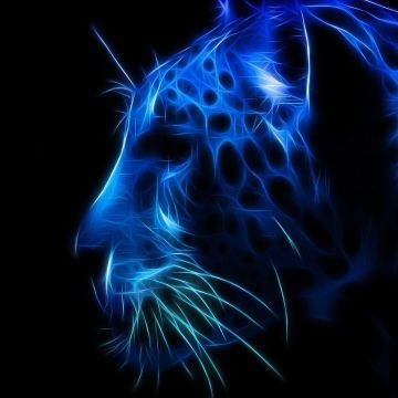 Neon Jaguar - Android, iPhone, Desktop HD Backgrounds / Wallpapers (1080p, 4k) HD Wallpapers (Desktop Background / Android / iPhone) (1080p, 4k)