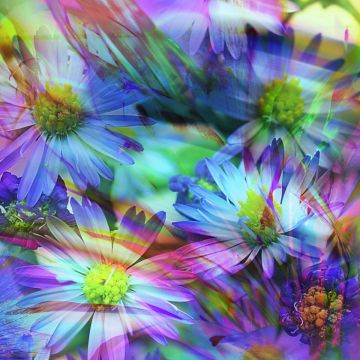 Spring Flowers Abstract - Android / iPhone HD Wallpaper Background Download HD Wallpapers (Desktop Background / Android / iPhone) (1080p, 4k)