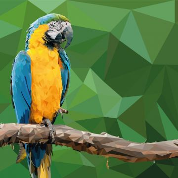 Macaw Low Poly Digital Art - Android / iPhone HD Wallpaper Background Download HD Wallpapers (Desktop Background / Android / iPhone) (1080p, 4k)