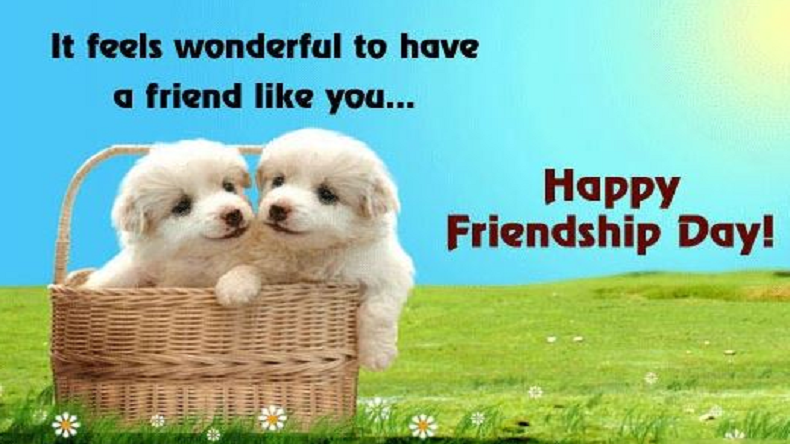 Friendship Day Quotes HD Wallpapers/Whatsapp status HD download (33487) - Friendship Day