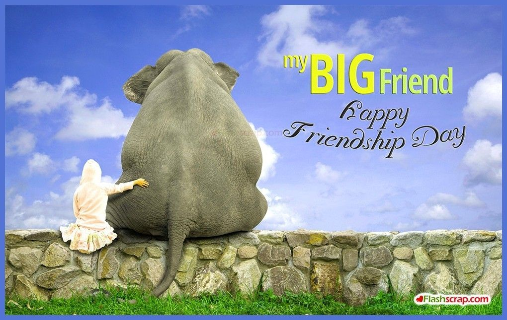 Friendship Day Quotes HD Wallpapers/Whatsapp status HD download (33891) - Friendship Day