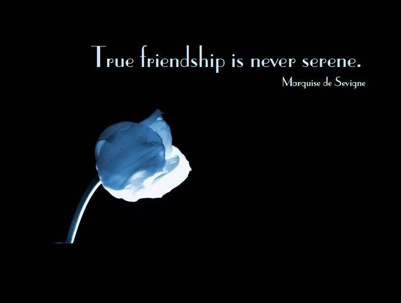 Friendship Day Quotes HD Wallpapers/Whatsapp status HD download (33730) - Friendship Day