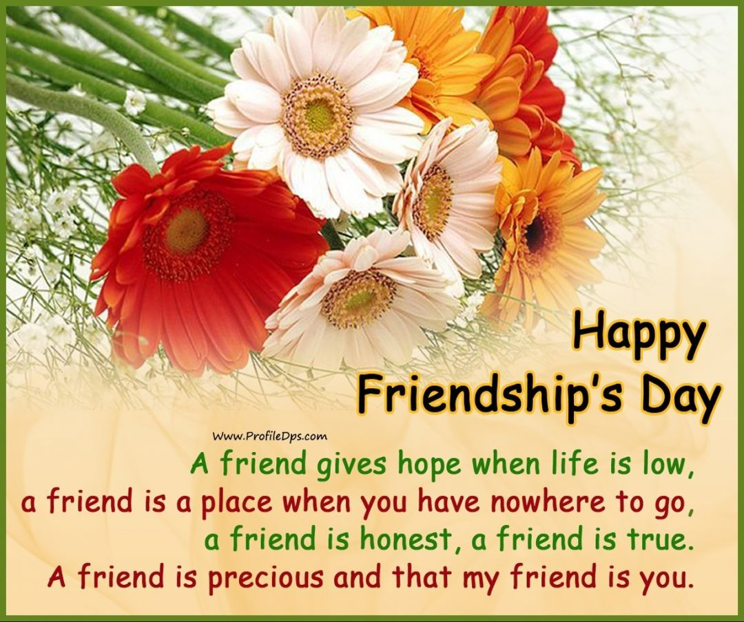 Friendship Day Quotes HD Wallpapers/Whatsapp status HD download (33916) - Friendship Day