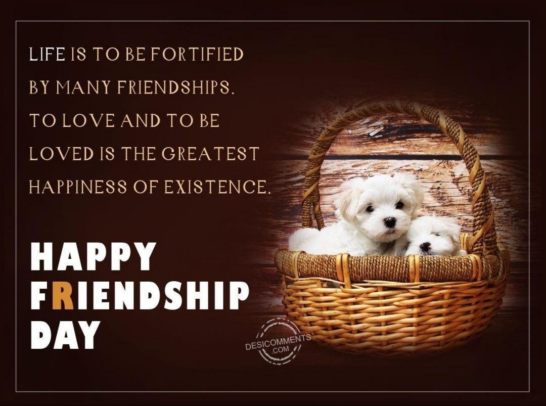 Happy Friendship Day Wishes HD Wallpapers/Whatsapp status HD (33480) - Friendship Day