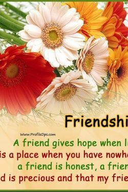 Friendship Day Quotes HD Wallpapers/Whatsapp status HD download - friendship,friendship day wishes,friendship day,friendship day whatsapp,whatsapp status
