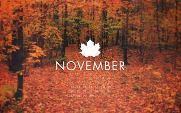 november - Mayfair Aesthetics Moorgate - Android / iPhone HD Wallpaper Background Download HD Wallpapers (Desktop Background / Android / iPhone) (1080p, 4k)