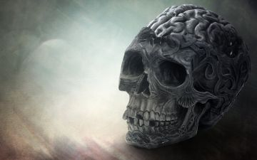 Brain Skull - Android, iPhone, Desktop HD Backgrounds / Wallpapers (1080p, 4k) HD Wallpapers (Desktop Background / Android / iPhone) (1080p, 4k)