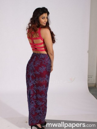 Daisy Shah HD Photos & Wallpapers (1080p) - daisy shah,choreographer,actress,bollywood,hd wallpapers