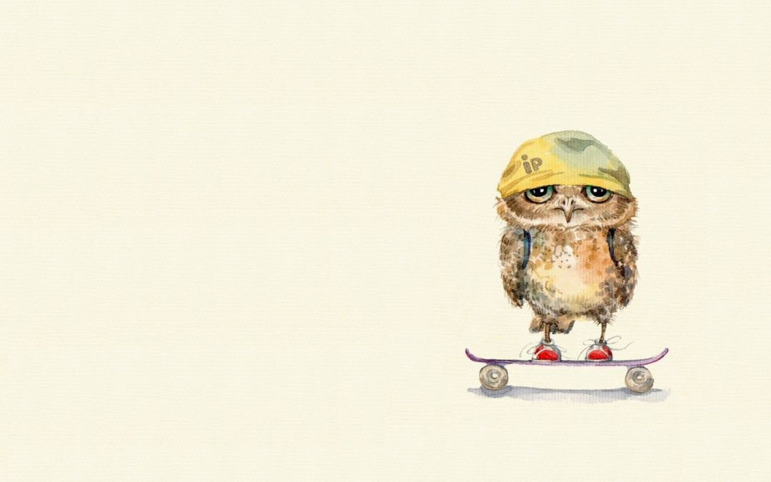 Owl On Skateboard - Android, iPhone, Desktop HD Backgrounds / Wallpapers (1080p, 4k) HD Wallpapers (Desktop Background / Android / iPhone) (1080p, 4k)