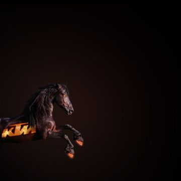 Ktm Horse - Android, iPhone, Desktop HD Backgrounds / Wallpapers (1080p, 4k) HD Wallpapers (Desktop Background / Android / iPhone) (1080p, 4k)