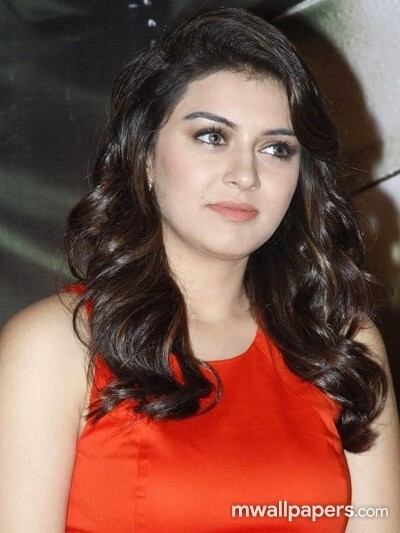 Hansika Motwani Beautiful HD Photos (1080p) (6542) - hansika, hansika motwani, kollywood, mollywood, tollywood, bollywood