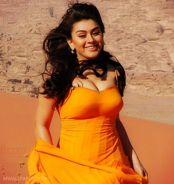 Hansika Motwani Beautiful HD Photoshoot Stills (1080p) (13208) - hansika motwani, actress, kollywood, tollywood, bollywood