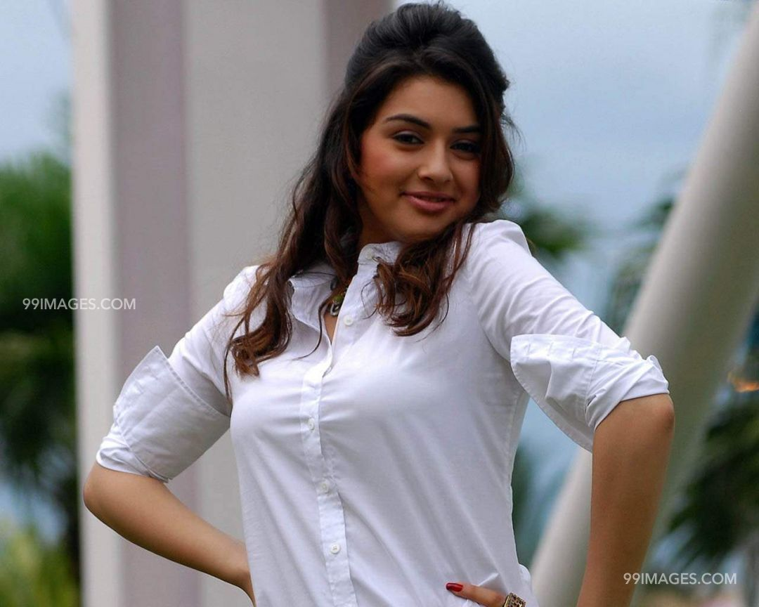 Hansika Motwani HD Wallpapers (Desktop Background / Android / iPhone) (1080p, 4k) (81696) - Hansika Motwani