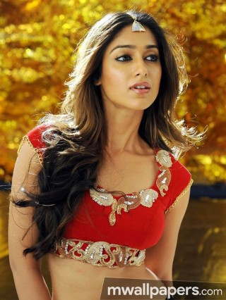 Ileana Dcruz Hot Hd Photos 1080p Androidiphoneipad Hd