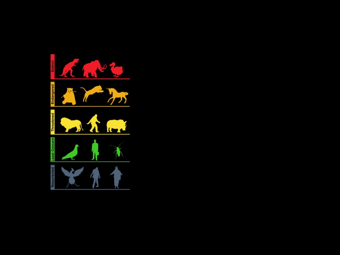 Life Evolution Minimalism - Android / iPhone HD Wallpaper Background Download HD Wallpapers (Desktop Background / Android / iPhone) (1080p, 4k) (815275) - Inspiration