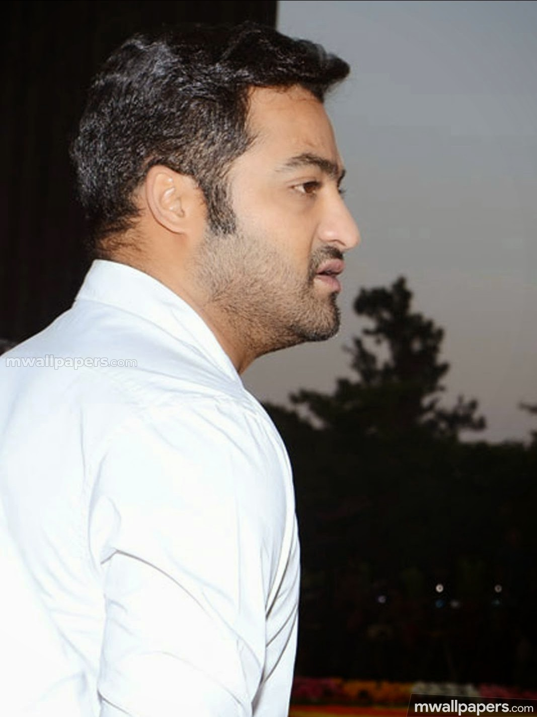 Jr NTR HD Photos & Wallpapers (1080p) (25939) - Jr NTR