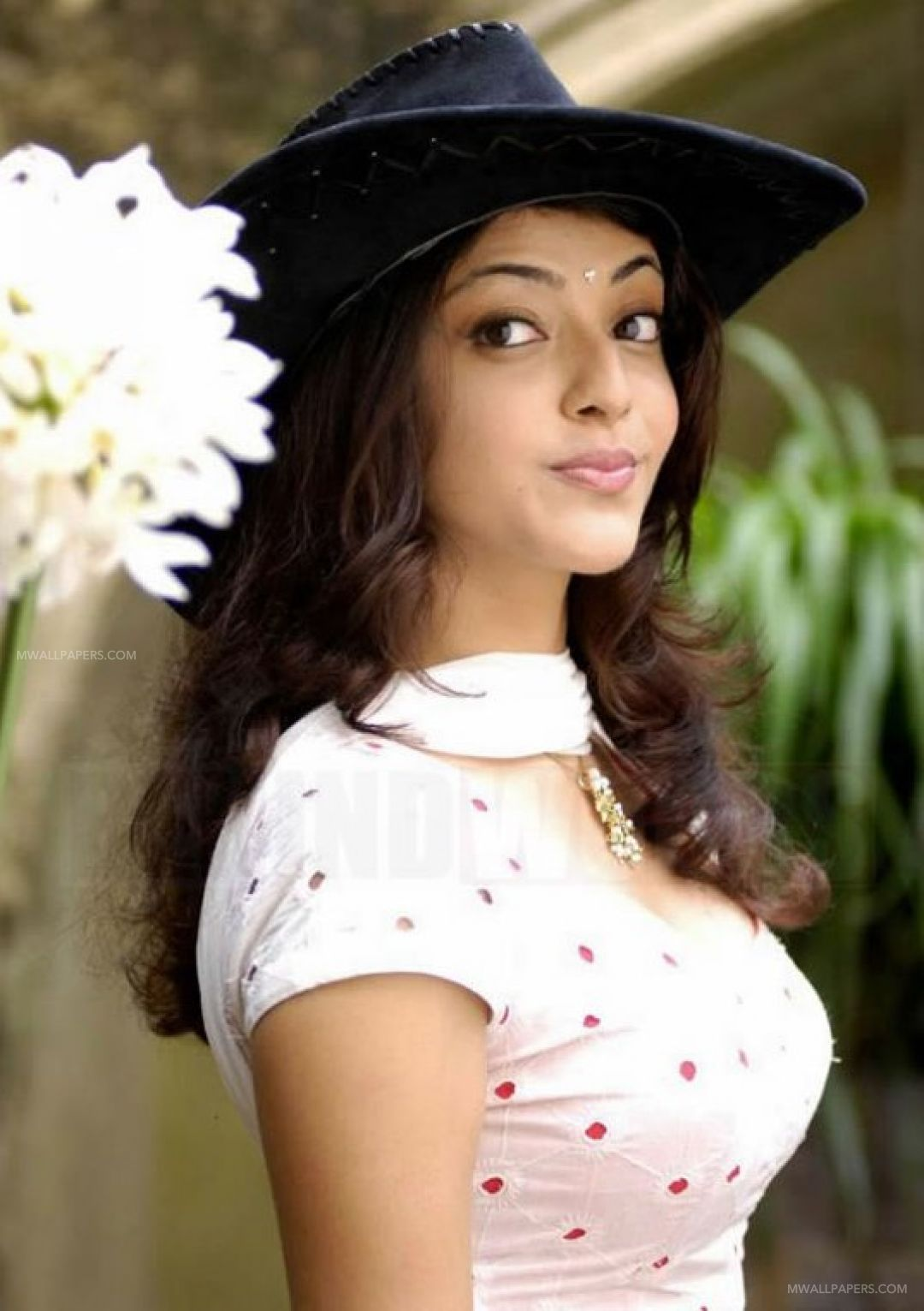 Kajal Agarwal HD Wallpapers (Desktop Background / Android / iPhone) (1080p, 4k) (35665) - Kajal Agarwal