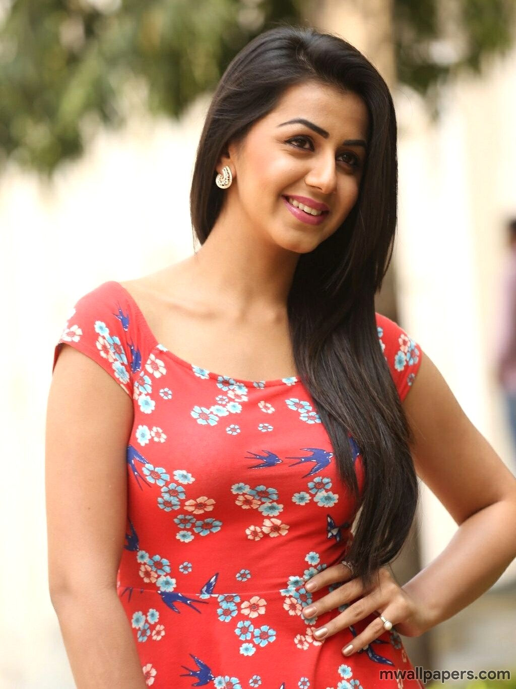 Nikki Galrani Latest HD Photos (1080p) (5290) - Nikki Galrani