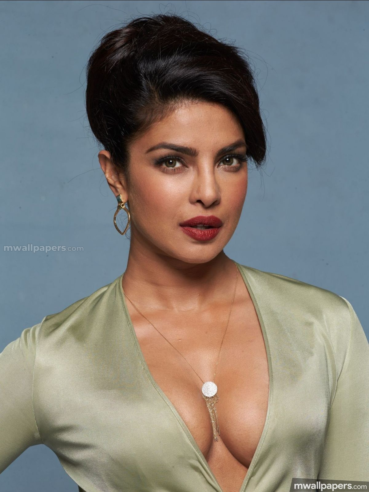 Priyanka Chopra Hot HD Photos (1080p) (15618) - Priyanka Chopra