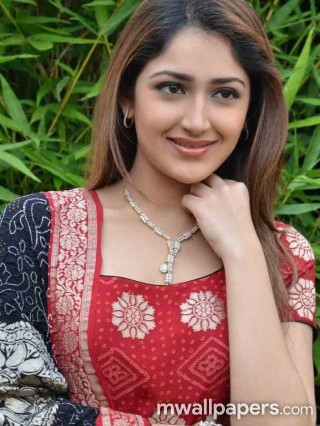 Best Sayesha Saigal HD Photos - sayesha,sayesha saigal,kollywood,tollywood,bollywood