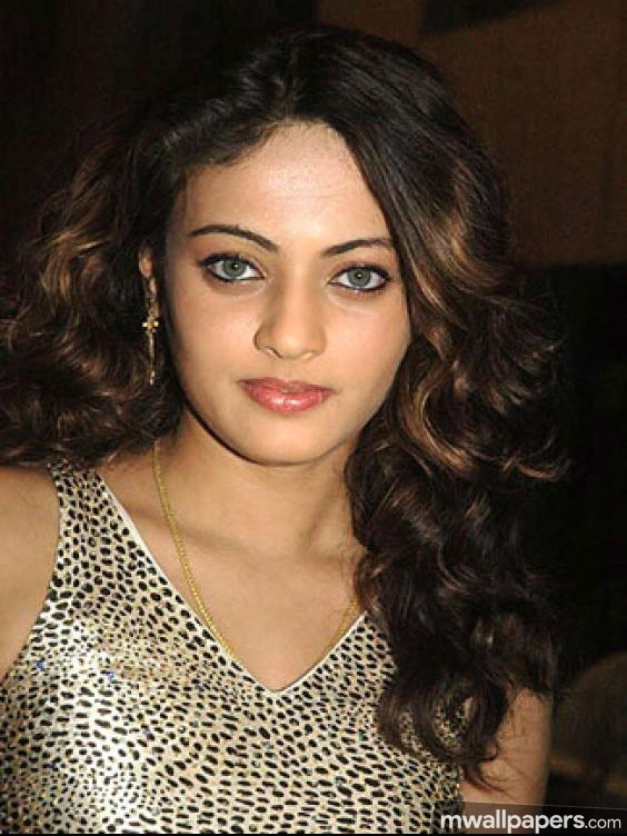 Sneha Ullal Hot HD Photos (1080p) (18265) - Sneha Ullal