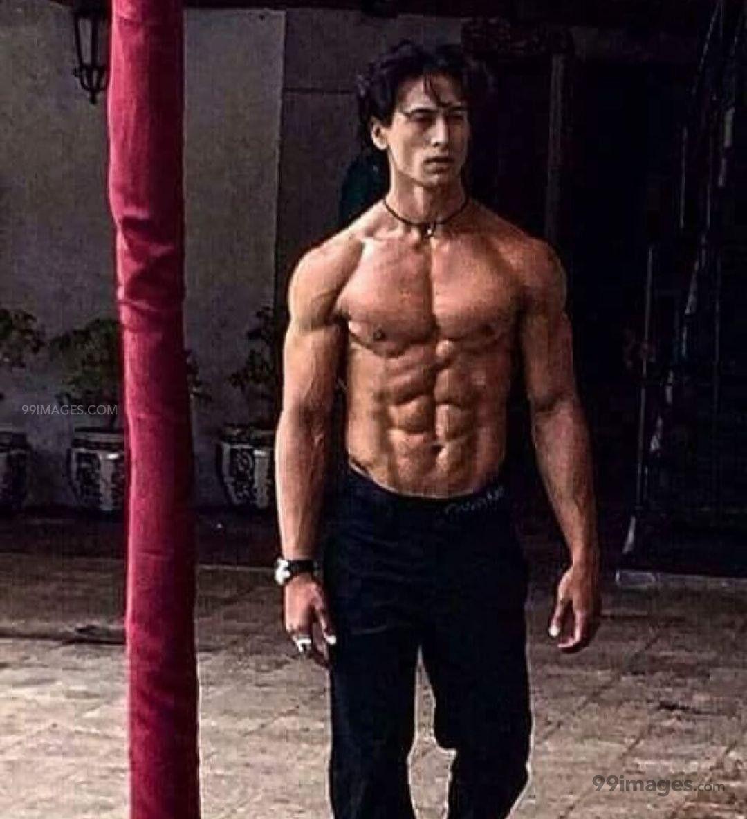 Tiger Shroff HD Wallpapers (Desktop Background / Android / iPhone) (1080p, 4k) (269126) - Tiger Shroff