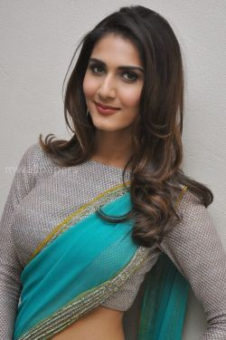 Vaani Kapoor Cute HD Photos (1080p) - vaani kapoor,hd wallpapers,bollywood,kollywood,actress