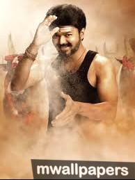 Vijay HD Photos & Wallpapers (1080p) (9594) - vijay, kollywood, mollywood, bollywood, actor, singer, dancer, ilayathalapathy, thalapthy