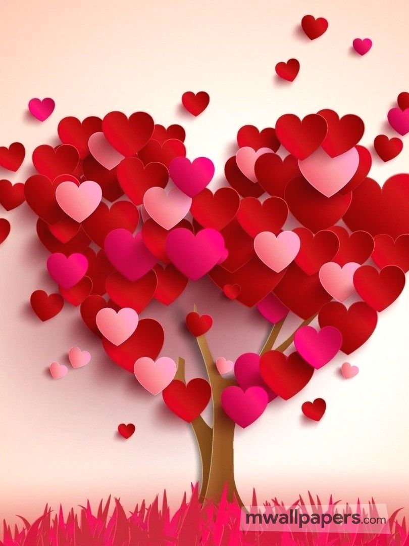 Love Images (HD) (242) - love, valentine, love wallpaper