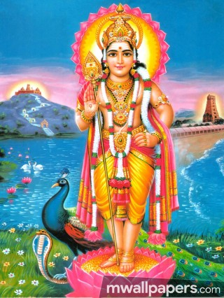 God Murugan Latest HD Photos & Wallpapers (1080p) - god murugan,hindu god,tamil kadavul,hd wallpapers,hd images