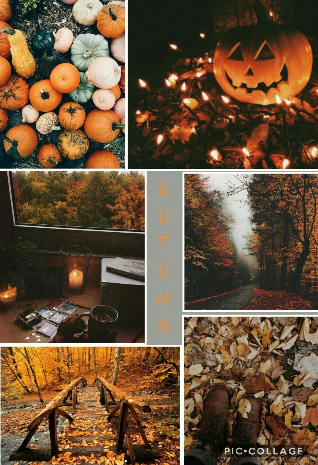 55 Hello Autumn Aesthetic Hd Wallpapers Desktop Background Android Iphone 1080p 4k 1200x1752 2020