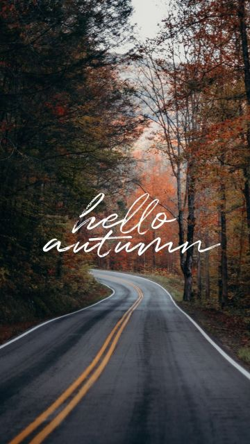 Hello Autumn Aesthetic HD Wallpapers (Desktop Background / Android / iPhone) (1080p, 4k)