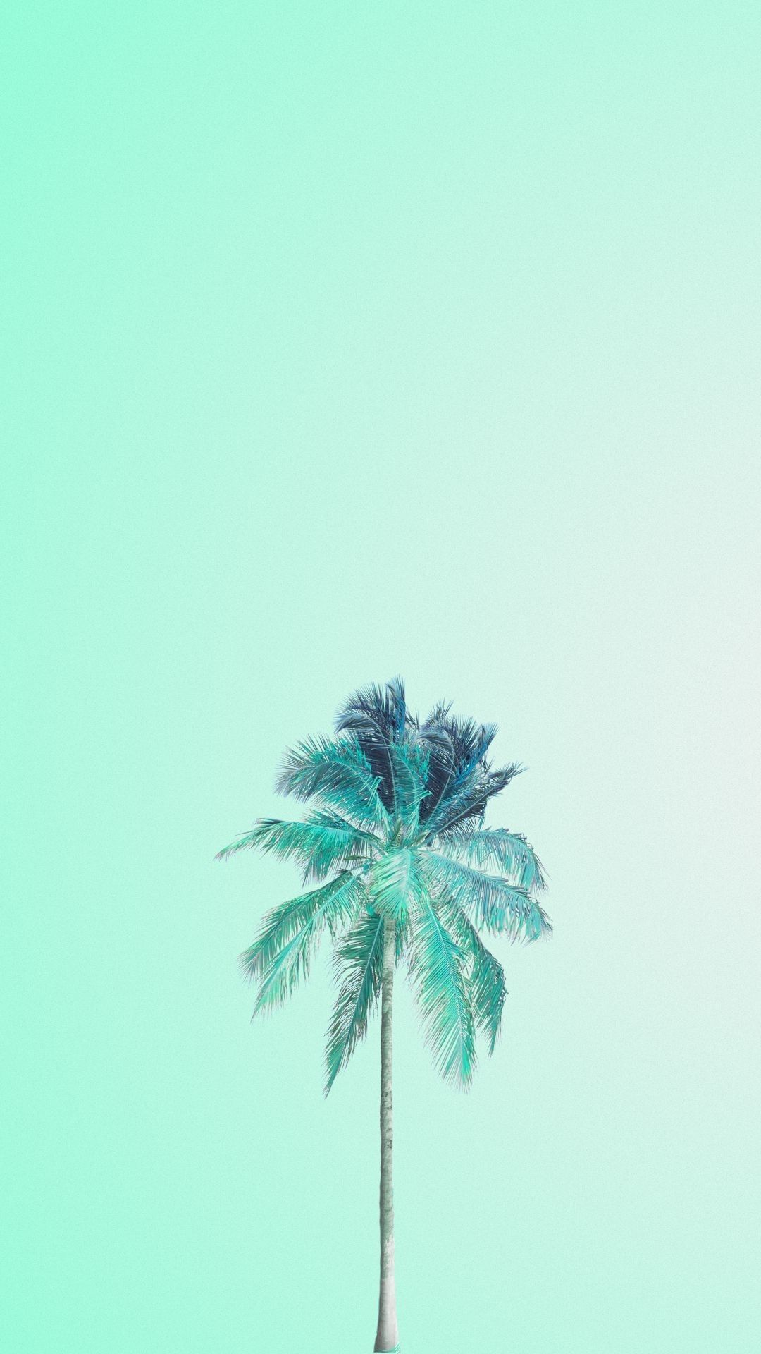 Mint Green Aesthetic HD Wallpapers (Desktop Background / Android / iPhone) (1080p, 4k) (35029) - 3D / Abstract