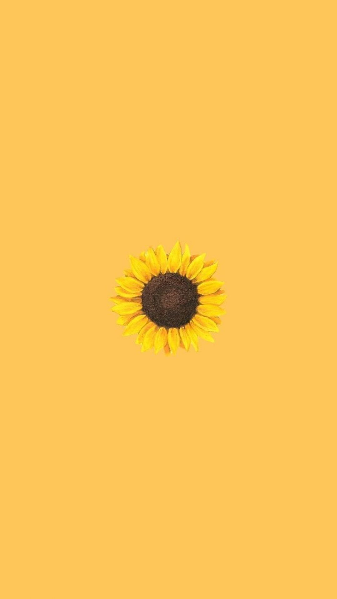 Yellow Aesthetic Sunflowers HD Wallpapers (Desktop Background / Android / iPhone) (1080p, 4k) (39240) - 3D / Abstract