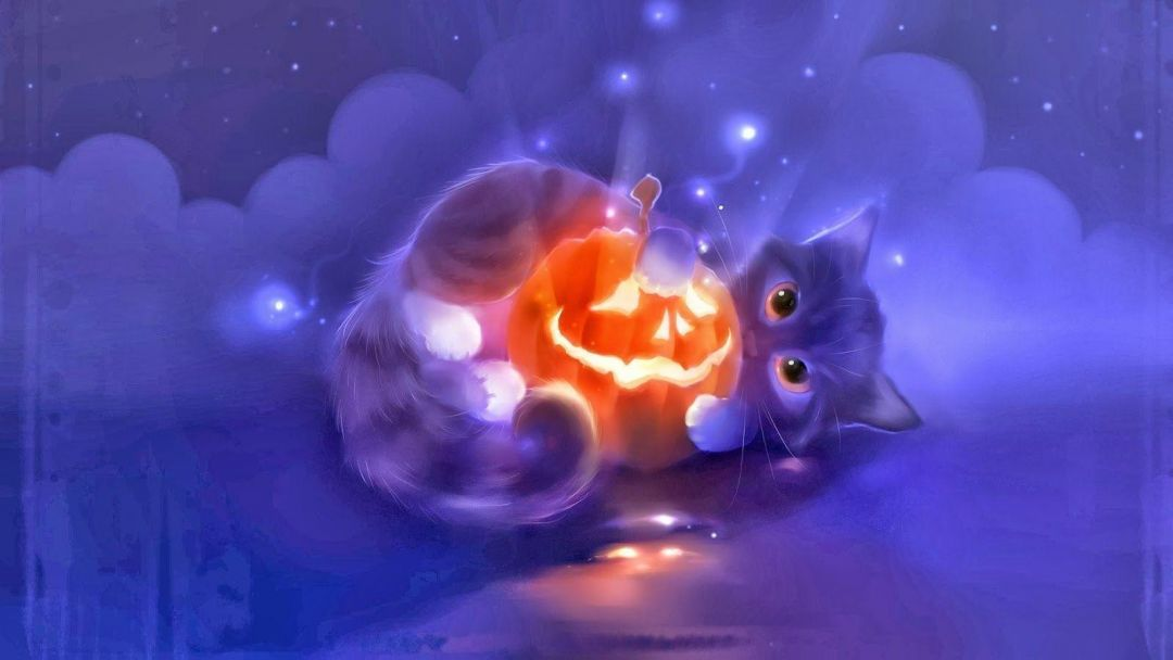 35 Kawaii Anime Cat Hd Wallpapers Desktop Background Android Iphone 1080p 4k 1600x900 2020